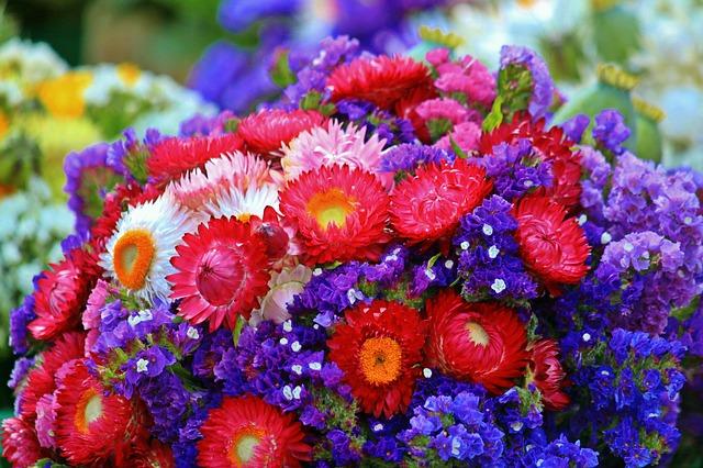 敬老の日 お花